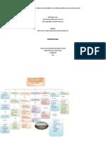 .Mapa conceptual de innovación.docx
