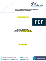 Plantilla - Informe Matriz de Riesgos