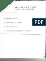 Carga de Fuego.pdf