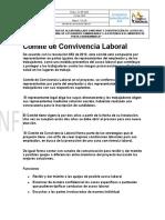 Comité de Convivencia Laboral consorcio samarkanda 2019