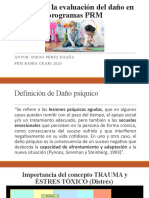 Guía para la evaluación del daño en PRM.pptx