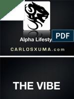 Vibe-Presentation.pdf