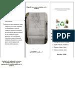 TRIPTICO-MANEJO-DE-RESIDUOS-SOLIDOS-convertido.docx