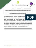 verben-fehlertext-der-krokus-und-seine-beschreibung