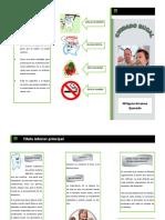 tripticoarrascuequevedo-150709131952-lva1-app6891.pdf