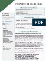 cv ..pdf