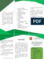 TRIPTICO GENERADOR DE ENERGIA EOLICA.docx