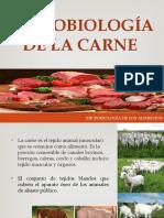 Microbiología de la carne