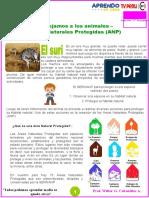 JUNIO-08 Protejamos a los animales -convertido