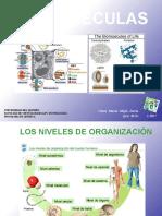 Clase 3 Biomoléculas