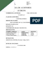 AUDICONplanificacion-1