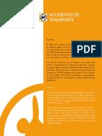 Accidentes de Transito.pdf