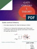 GATE CONTROL THEORY.pptx