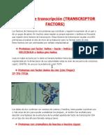 31-07-BIOQUIMICA factores de trasnscripcion.docx