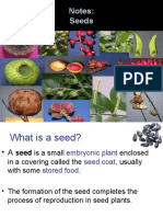 seedstructure-130129220104-phpapp01
