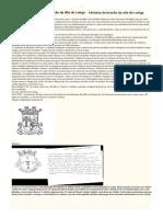 História Do Brasão de Loriga - Pequenissimo Resumo de Parte Do Processo