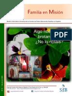 Familia en Misión Nº 27 Julio 2020