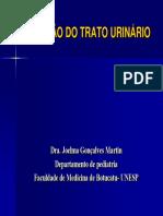 INFECCAO DO TRATO URINARIO.pdf