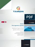 TAMOIN - Diseño y Ejecucion Fugas PERU
