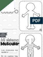 sistemas-aparato-del-cuerpo-humano.pdf