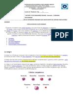 guia de biologia 7 didática de clase