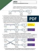 Control de Stering AQUAMASTER de BABOR.pdf