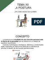 Tema Xii La Postura