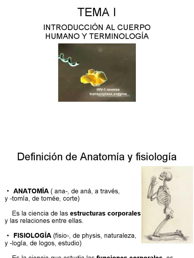 TEMA I: INTRODUCCIÓN AL CUERPO HUMANO