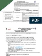 Guias Undécimo (4).pdf