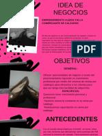 idea de negocios.pdf