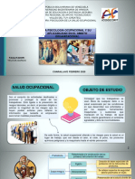 PRESENTACION SALUD OCUPACIONAL.pdf