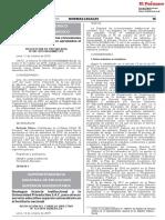 RP-087-2019-PE.pdf