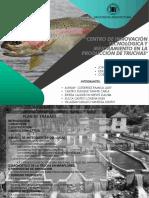 TALLER VI (FINAL).pdf