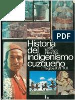 tapa indigenismo