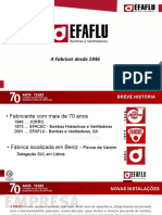 EFAFLU Geradores