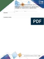 Anexo - Formato Informes PRACTICA QUIMICA 3