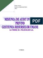 Misiunea de Audit Intern Privind Gestiunea Resurselor Umane