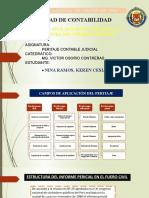 Campo de aplicación y estructura del informe