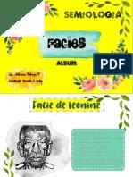 DIBUJOS DE FACIES.pdf · versión 1