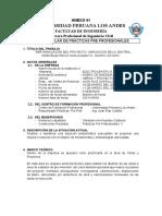 PLAN DE PRACTICAS II.docx