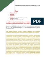 MODELO DE DENUNCIA POR USURPACIÓN AGRAVADA Y DAÑOS DE ACUERDO CON EL NCPP.docx
