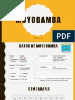 Análisis de la Ciudad de Moyobamba