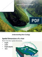 RIVER ECOLOGY Lecture 4.pptx