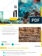 Rochas_sedimentares,_arquivos_da_história_da_Terra.pptx