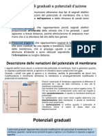 10_ potenziali graduati e potenziale d-azione