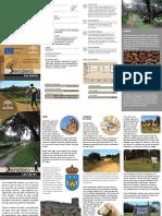 885_LosCarros.pdf