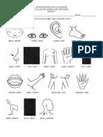 Evaluación Acumulativa Inglés 5° I.docx