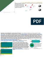 Tesla_ Metodo  Energía Radiante en Estado Solido  I+D.docx