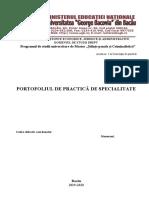 1.-portofoliu-de-practica.master.msp.2019.docx