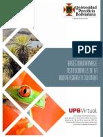 antecedentes_legales.pdf